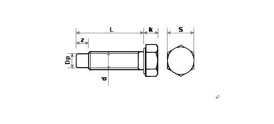 육각볼트(전산,봉끝).JPG